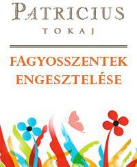 Patricius Winery Ice Saints