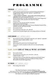 Tokaj Spring 2015 programme