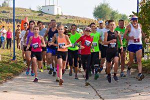 2015.10.11. Disznókő Running Race - Fútókör photo from 2014 race