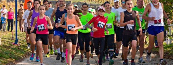 2015.10.11. Disznókő Running Race - Fútókör photo from 2014 race