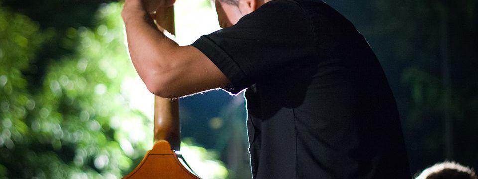 Photo of cello - live music concert Tokaj wine region July 2015