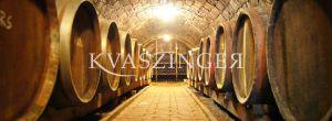 Kvaszinger wine tasting ABoros Borbár - cellar photo