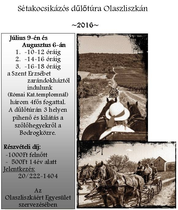 flyer for Olaszliszka vineyard tour - dűlőtúra